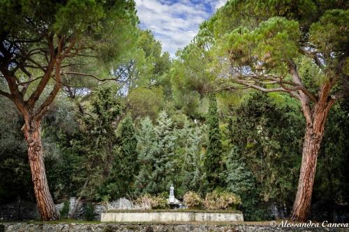 """8° Concorso """"Obiettivo Hanbury"""" indetto dai Giardini Botanici Hanbury di Ventimiglia"""